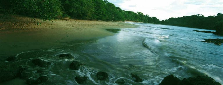 Manuel Antonio Park will restrict visitor access to try to reduce pollution