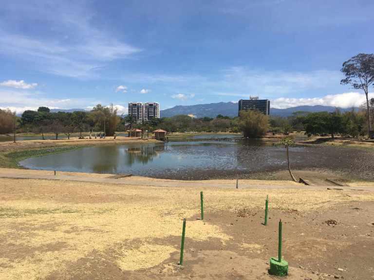 My Photos Confirm Severe Drought In La Sabana Lake