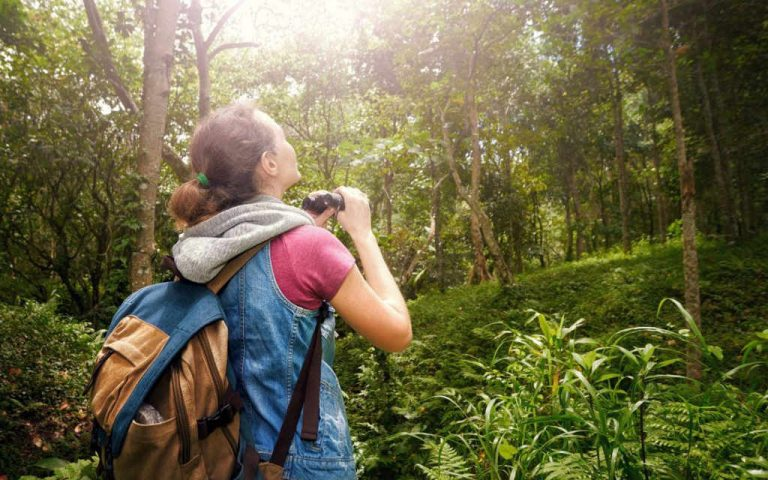 Top Eco Tourism Destinations in the World