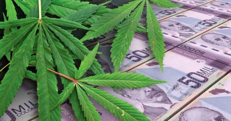 Colombian marijuana returns to the Costa Rica market after 11 years