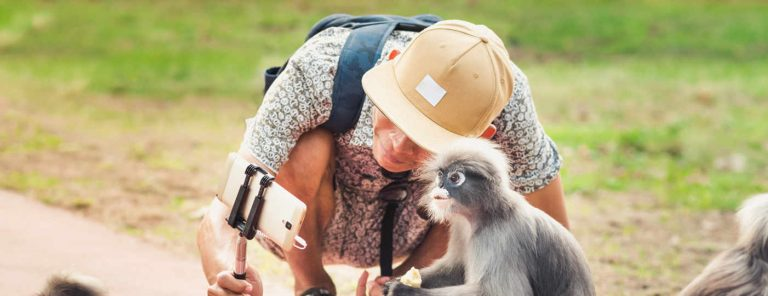Costa Rica Wants To End Selfies With Wild Animals