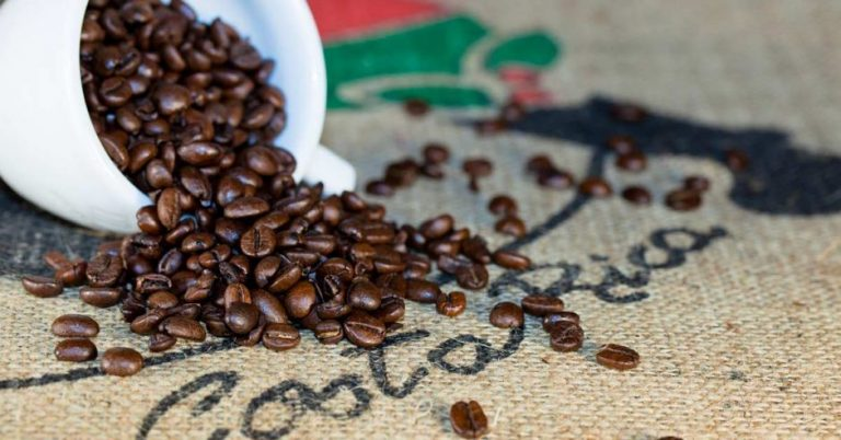 Costa Rica Coffee Exports Dip In December