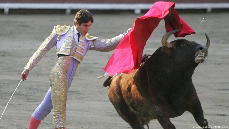 Cock and bull fighting are legal, Peru's top court rules