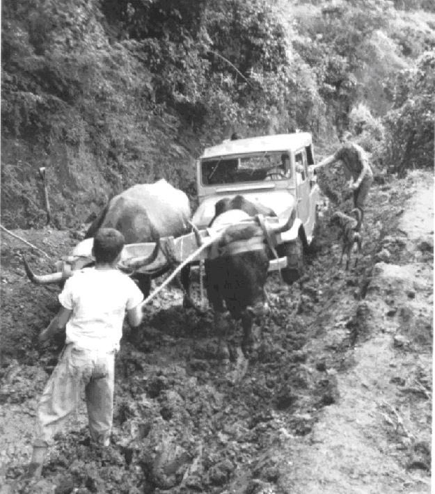 Getting to Monteverde in 1960