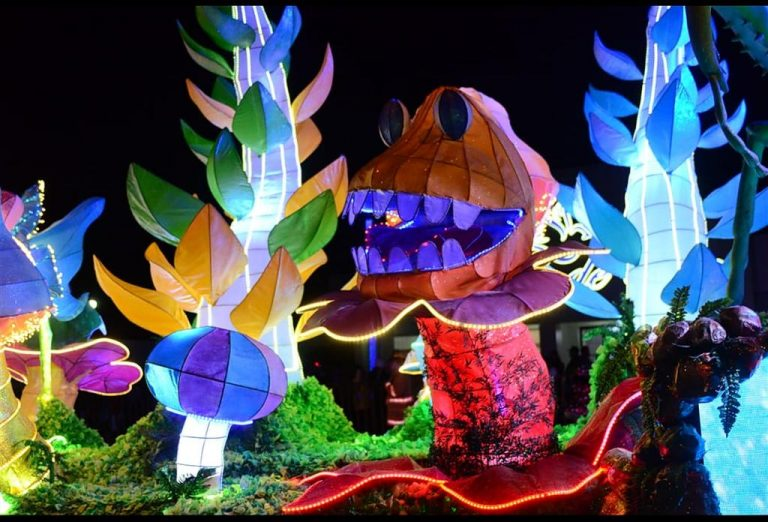 2020 Light Festival Suspended; Zapote in Doubt