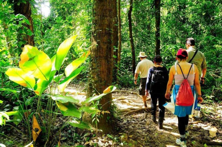 Pending task: Lowering costs for tourists via taxes