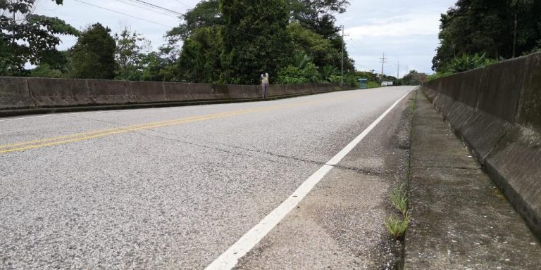 Bridge over the Coronado River, in Costanera Sur, will be closed for 3 weeks