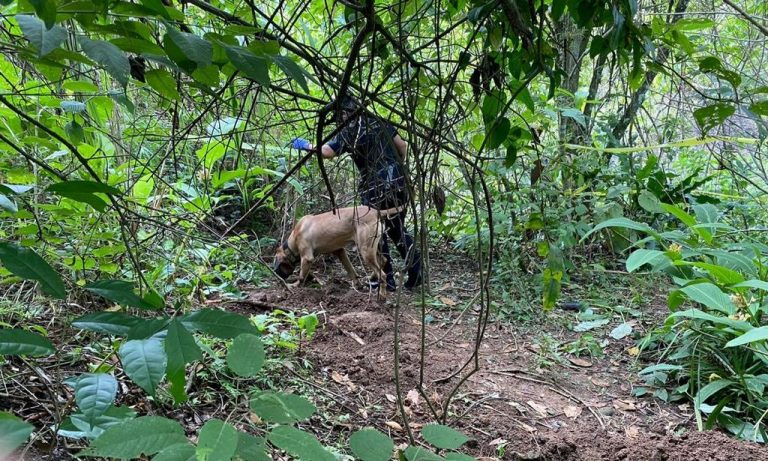 Allison Bonilla case: OIJ did not find anything in an alleged grave located by the search team