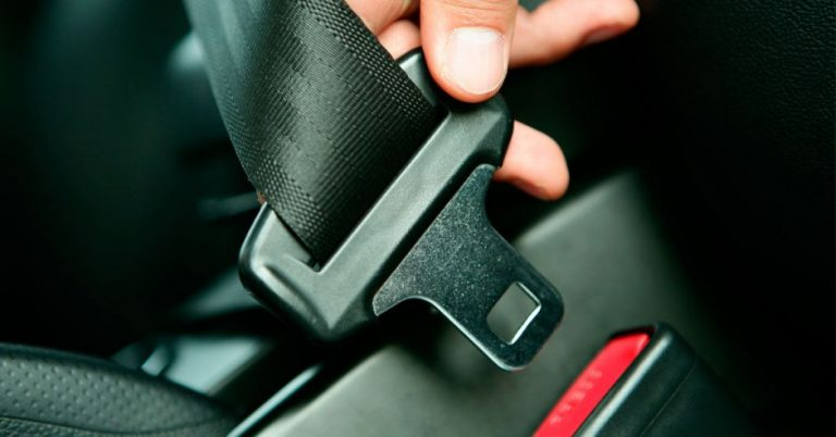 Tickets issued for not buckling up and use of cell phone at the wheel increased this year