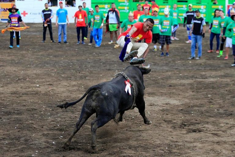 Yes, there will be bullfights this year in Zapote!