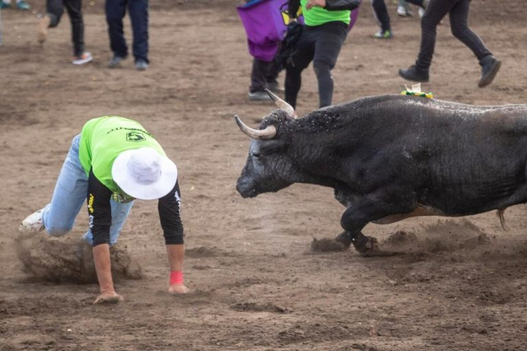 Third time in 50 years that San Jose bullfights have been suspended