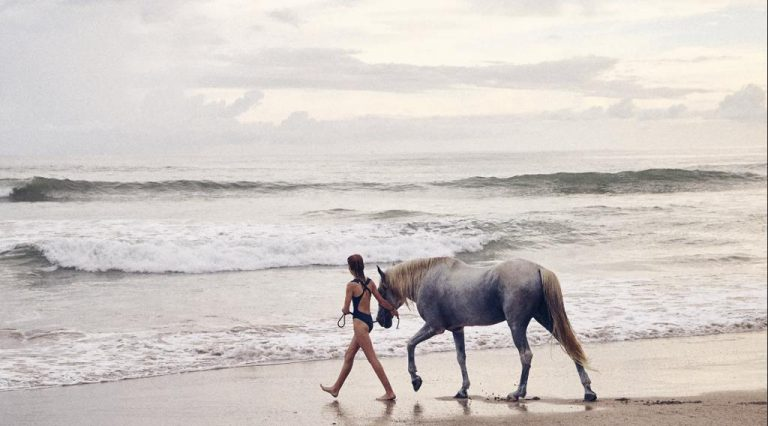 Costa Rica's Buzzy Nicoya Peninsula Is a Natural Haven for Creatives