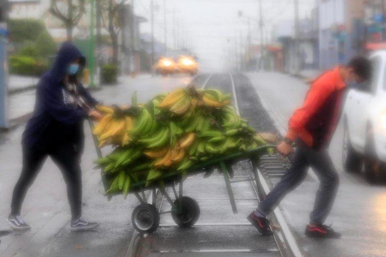 Flog, rain and cold this morning in Cartago (Photos)