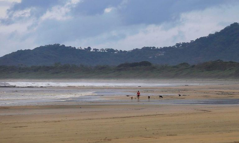 Tourist arrivals to Costa Rica fell 68% last year compared to 2019