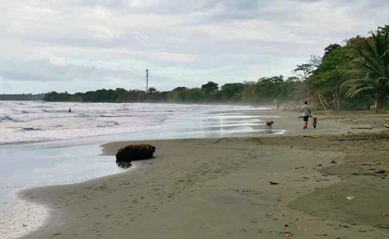 Young Amrican woman drowned from apparent indigestion on Limón beach