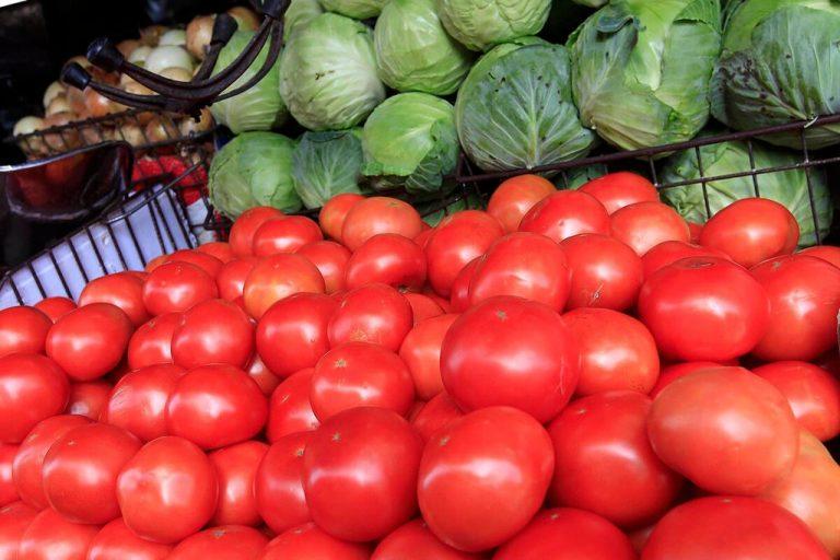 Price of Tomato beginning to return to normal