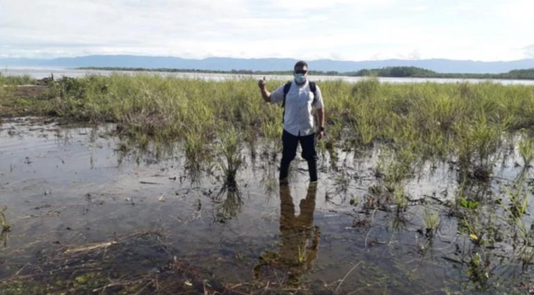 Health workers Look for older adults at bus stops and mangroves to vaccinate them in Osa