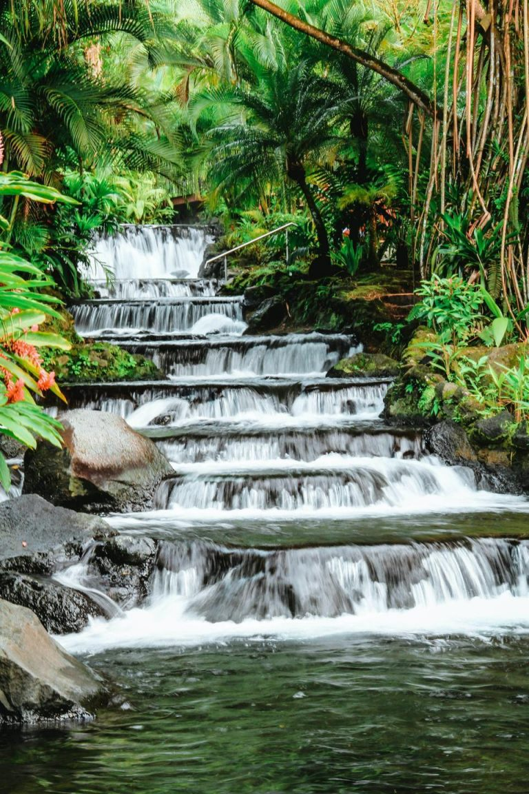 Entertainment Or Nature. What's Better In Costa Rica?