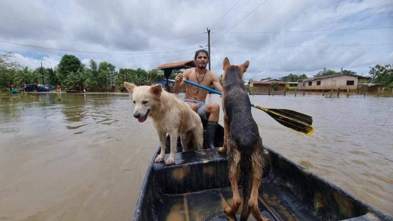Tambor de Sarapiquí remains underwater and without basic services